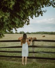 牧場駿馬美女背影圖片