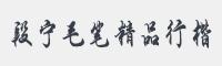 段寧毛筆精品行楷字體