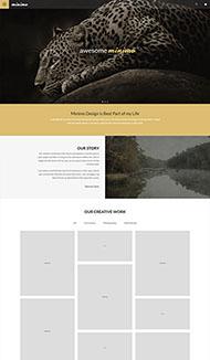 棕色风格美洲虎网站模板