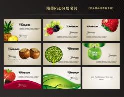 水果主題PSD分層名片
